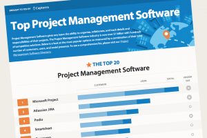 infographic-teaser-project-management